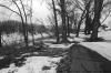 Red River in the spring, Fargo, North Dakota. 35mm 125PX.