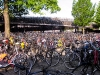 Bicycles all over the place! Welcome to Amsterdam.