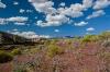 A view near St. George, Utah.